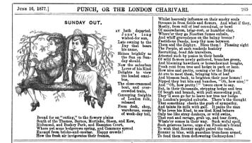 Meerschaums and Dandies in Punch 1877